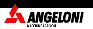 Angeloni logo