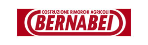 Bernabei logo